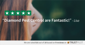 Trustpilot Review - Lisa