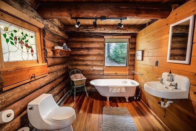 damp bathrooms attract silverfish