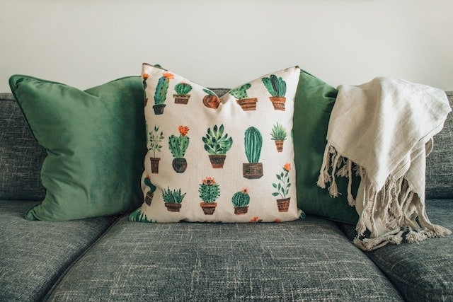 furniture with fleas