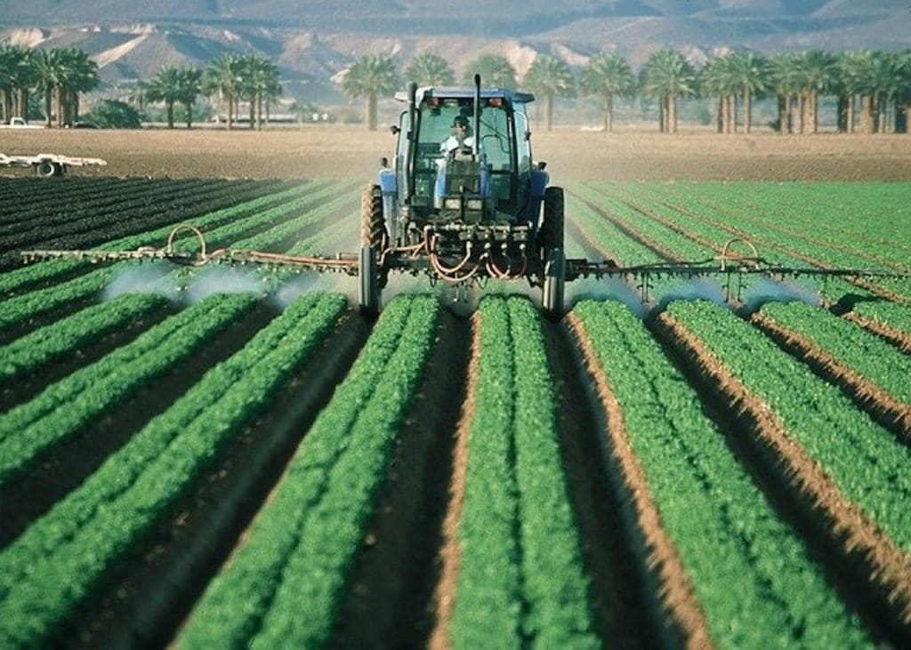 pesticides sprayed on field
