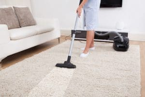 Cleaning Carpet for pest control