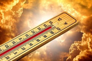 heat treatment for fleas