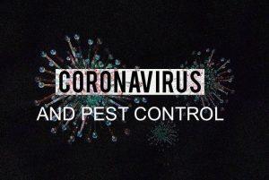 pest control during coronavirus