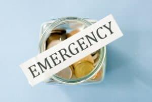 emergency pest control savings