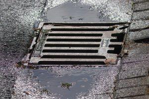 rat flaps for drains