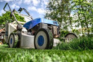 lawnmower in london garden