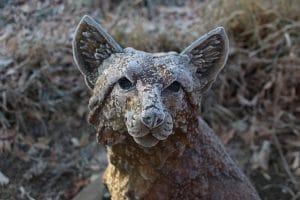 fox stature in london garden