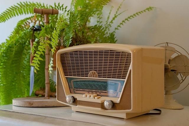 radio fox deterrent