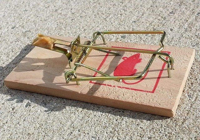 old style mouse trap