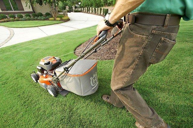 mowing lawn in garden